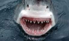 العثور على جثة لاعب كرة قدم بعدما نهشتها أسماك القرش