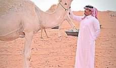 """مشجع اهلاوي يقدم """"ناقة"""" للسومة بعد تسجيله هاتريك امام النصر"""