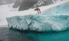 بريطاني ..أول شخص يسبح بالقطب الجنوبي المتجمد