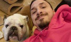 زلاتان ينشر صورة مع كلبه