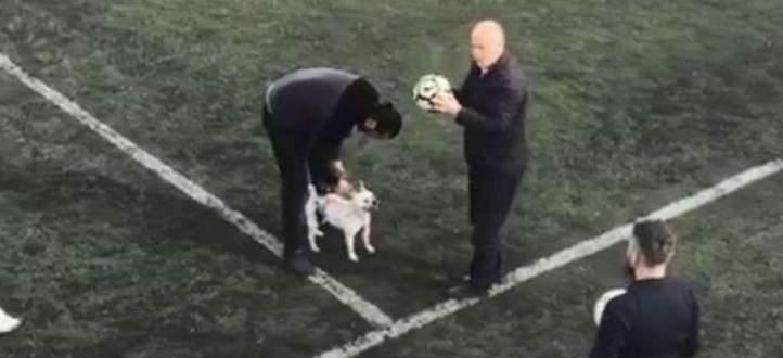 كلب يراوغ على طريقة ميسي في تركيا