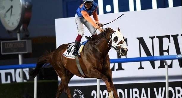 فوز يتحول الى مأساة في كأس دبي العالمي للخيول
