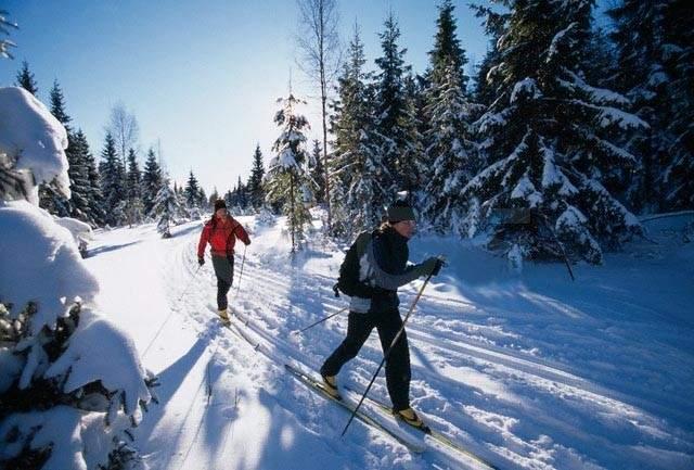 بطولة تزلج العمق برعاية قائد الجيش: المسابقات تنطلق الخميس في الأرز