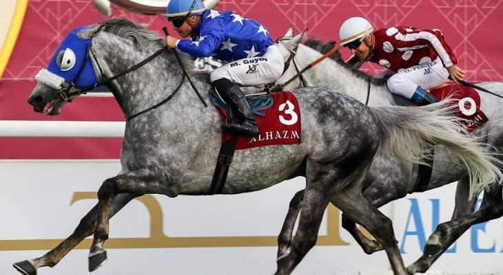 سباق قطر إنترناشونال ستيكس يستقطب أفضل الجياد العربية الاصيلة